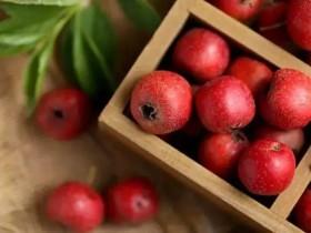 空腹不能吃的水果有哪些?