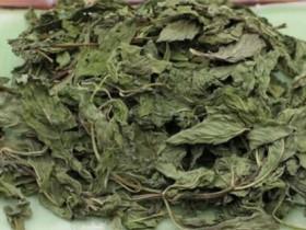 干薄荷茶的功效与作用