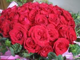 56朵玫瑰代表什么意思