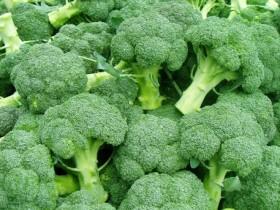 青花菜的营养价值-青花菜的功效作用