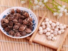 辣木籽的功效与作用-辣木籽能不能护肝