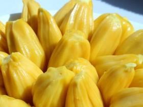 菠萝蜜怎么吃